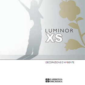 Luminor XS